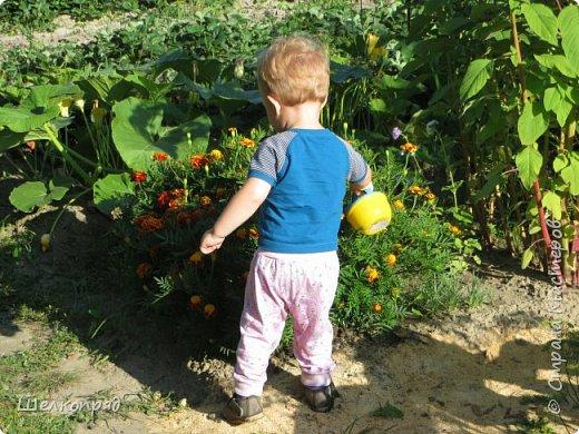 Мы с Елисеем не только гуляем и развлекаемся, но ещё и работаем. Здесь он мне помогает цветочки поливать. фото 1