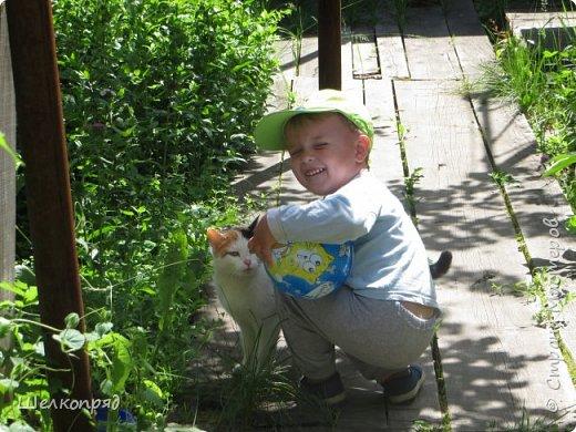 Мы с Елисеем не только гуляем и развлекаемся, но ещё и работаем. Здесь он мне помогает цветочки поливать. фото 87