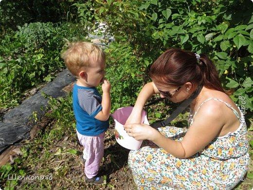 Мы с Елисеем не только гуляем и развлекаемся, но ещё и работаем. Здесь он мне помогает цветочки поливать. фото 57