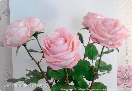 Добрый день мастера и мастерицы!!!!Продолжаю розовую эпопею,что заказывают ,то и леплю.Наконец то опробовала покупную глинку,лепить приятно,но цены кусаются. фото 1