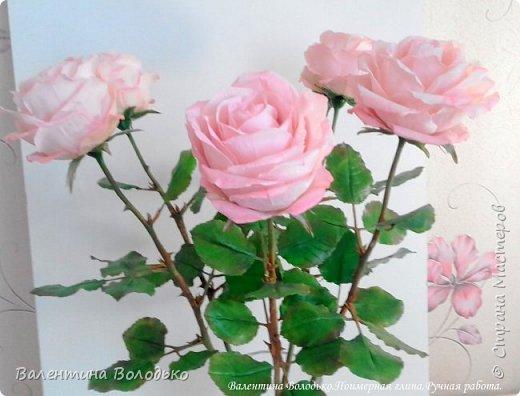 Добрый день мастера и мастерицы!!!!Продолжаю розовую эпопею,что заказывают ,то и леплю.Наконец то опробовала покупную глинку,лепить приятно,но цены кусаются. фото 6