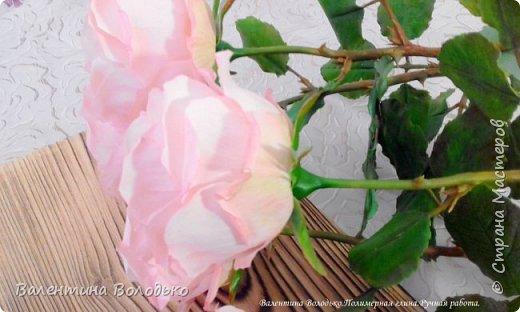 Добрый день мастера и мастерицы!!!!Продолжаю розовую эпопею,что заказывают ,то и леплю.Наконец то опробовала покупную глинку,лепить приятно,но цены кусаются. фото 2