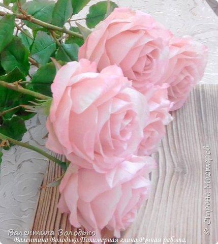 Добрый день мастера и мастерицы!!!!Продолжаю розовую эпопею,что заказывают ,то и леплю.Наконец то опробовала покупную глинку,лепить приятно,но цены кусаются. фото 3