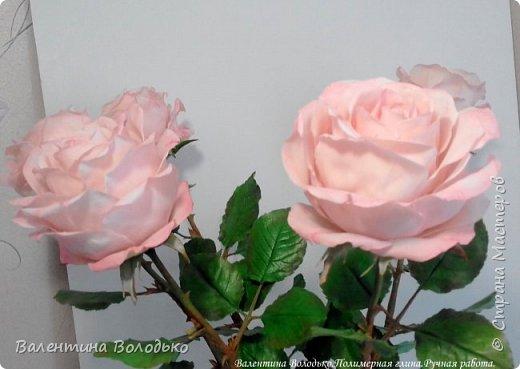 Добрый день мастера и мастерицы!!!!Продолжаю розовую эпопею,что заказывают ,то и леплю.Наконец то опробовала покупную глинку,лепить приятно,но цены кусаются. фото 4