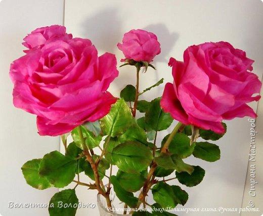 Добрый вечер мастера и мастерицы!!!!Перед вами очередные розы. фото 7