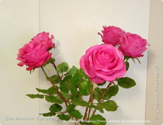 Добрый вечер мастера и мастерицы!!!!Перед вами очередные розы. фото 3