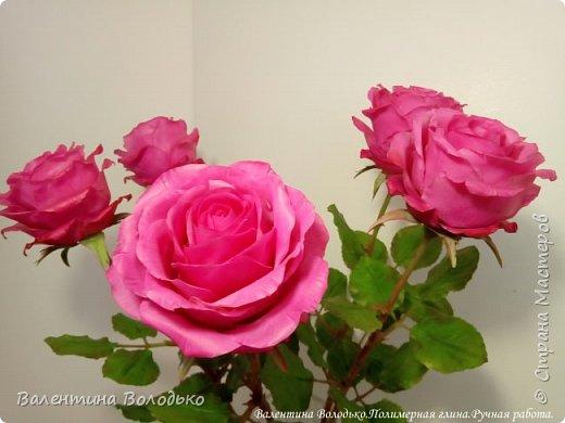 Добрый вечер мастера и мастерицы!!!!Перед вами очередные розы. фото 1