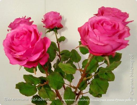 Добрый вечер мастера и мастерицы!!!!Перед вами очередные розы. фото 2