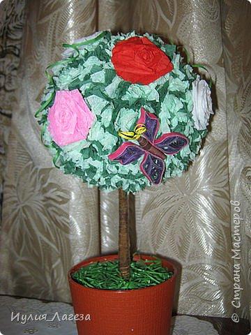 Добрый день!Дерево и открытка-шоколадница сделаны в подарок знакомой. При сборке дерева пользовалась МК  https://stranamasterov.ru/node/31870,спасибо Kukushechkе и МК https://stranamasterov.ru/node/152226, спасибо  Elena.ost. Розы из гофрированной бумаги. фото 4