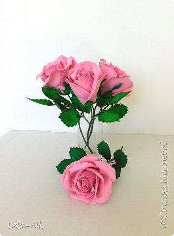 розовые розы фото 4