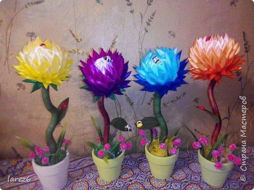Добрый день. Выставляю топиарии как они получаются у меня. Я не очень люблю кофейные деревца и из салфеток, но увидев на сайте мк  топиария в стиле артишок решила попробовать.  Извините первое фото, это подарок учителю к 8 марта. Теперь такие деревца есть почти у всех моих знакомых. Не все догадываются что это искусственные цветы. фото 4