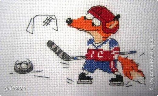 Хоккей. фото 1