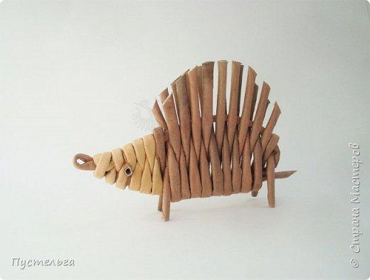 """Это ёжик для самых маленьких мастеров. Всего 7 трубочек - 1 бежевая, 6 коричневых. Трубочки скручены из трети листа потребительской бумаги """"Кондопога"""" на спицу 1,2 мм. фото 1"""