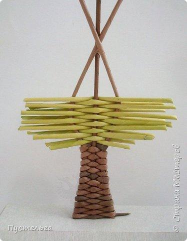 """Это ёлочка и яблонька для моих юных мастеров. Трубочки скручены из трети листа потребительской бумаги """"Кондопога"""" на спицу 1,2 мм. Ёлочка - 4 коричневых, 9 зелёных трубочек. Яблоня - 6 коричневых, 10 зелёных, 2 красные трубочки. Подставочки 3 + 3 трубочки. Основы сухие, остальные трубочки слегка влажные. фото 16"""