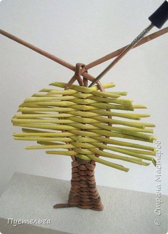 """Это ёлочка и яблонька для моих юных мастеров. Трубочки скручены из трети листа потребительской бумаги """"Кондопога"""" на спицу 1,2 мм. Ёлочка - 4 коричневых, 9 зелёных трубочек. Яблоня - 6 коричневых, 10 зелёных, 2 красные трубочки. Подставочки 3 + 3 трубочки. Основы сухие, остальные трубочки слегка влажные. фото 17"""