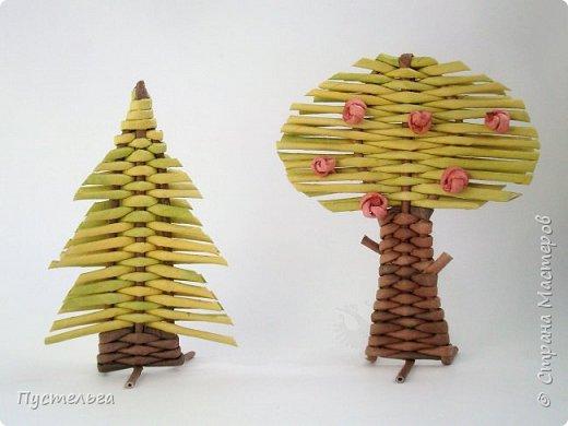 """Это ёлочка и яблонька для моих юных мастеров. Трубочки скручены из трети листа потребительской бумаги """"Кондопога"""" на спицу 1,2 мм. Ёлочка - 4 коричневых, 9 зелёных трубочек. Яблоня - 6 коричневых, 10 зелёных, 2 красные трубочки. Подставочки 3 + 3 трубочки. Основы сухие, остальные трубочки слегка влажные. фото 21"""