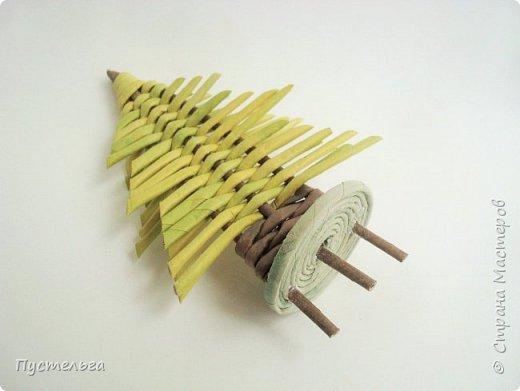 """Это ёлочка и яблонька для моих юных мастеров. Трубочки скручены из трети листа потребительской бумаги """"Кондопога"""" на спицу 1,2 мм. Ёлочка - 4 коричневых, 9 зелёных трубочек. Яблоня - 6 коричневых, 10 зелёных, 2 красные трубочки. Подставочки 3 + 3 трубочки. Основы сухие, остальные трубочки слегка влажные. фото 22"""