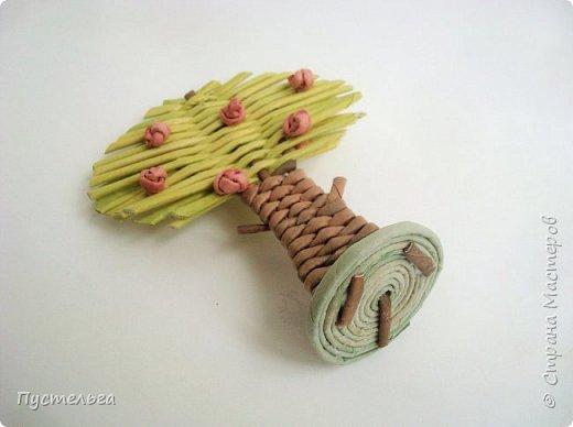 """Это ёлочка и яблонька для моих юных мастеров. Трубочки скручены из трети листа потребительской бумаги """"Кондопога"""" на спицу 1,2 мм. Ёлочка - 4 коричневых, 9 зелёных трубочек. Яблоня - 6 коричневых, 10 зелёных, 2 красные трубочки. Подставочки 3 + 3 трубочки. Основы сухие, остальные трубочки слегка влажные. фото 23"""