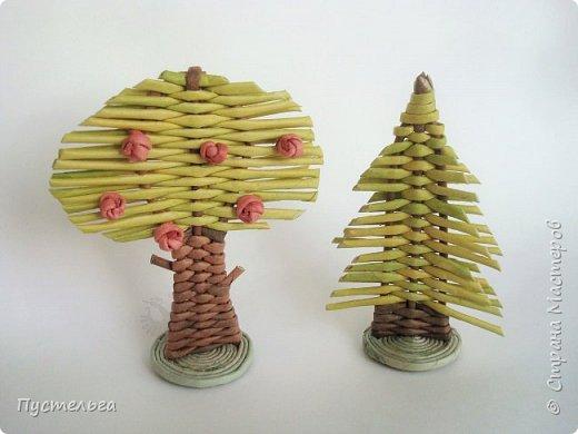 """Это ёлочка и яблонька для моих юных мастеров. Трубочки скручены из трети листа потребительской бумаги """"Кондопога"""" на спицу 1,2 мм. Ёлочка - 4 коричневых, 9 зелёных трубочек. Яблоня - 6 коричневых, 10 зелёных, 2 красные трубочки. Подставочки 3 + 3 трубочки. Основы сухие, остальные трубочки слегка влажные. фото 24"""