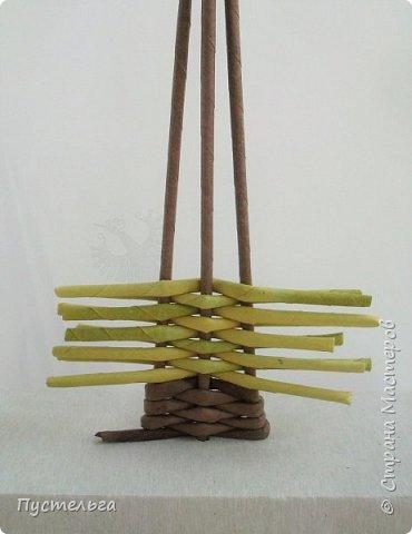 """Это ёлочка и яблонька для моих юных мастеров. Трубочки скручены из трети листа потребительской бумаги """"Кондопога"""" на спицу 1,2 мм. Ёлочка - 4 коричневых, 9 зелёных трубочек. Яблоня - 6 коричневых, 10 зелёных, 2 красные трубочки. Подставочки 3 + 3 трубочки. Основы сухие, остальные трубочки слегка влажные. фото 6"""