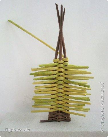 """Это ёлочка и яблонька для моих юных мастеров. Трубочки скручены из трети листа потребительской бумаги """"Кондопога"""" на спицу 1,2 мм. Ёлочка - 4 коричневых, 9 зелёных трубочек. Яблоня - 6 коричневых, 10 зелёных, 2 красные трубочки. Подставочки 3 + 3 трубочки. Основы сухие, остальные трубочки слегка влажные. фото 8"""