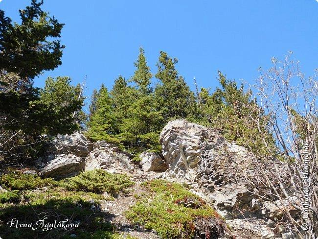 Первый выход в горы после долгой зимы, благо до них езды около часа... Пеший маршрут 15 км с подъемом на 300 метров. Озеро Барьер .  Хорошая солнечная погода, синее небо, свежий воздух и запахи весны! фото 7