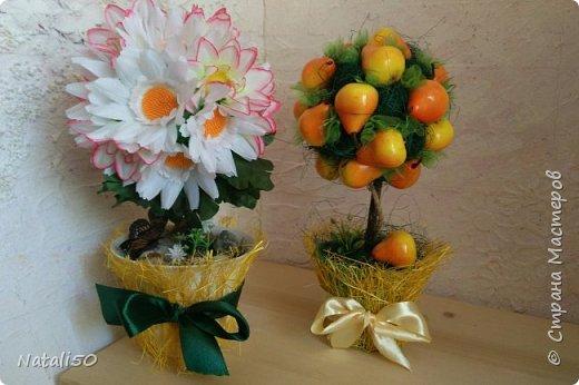 Доброго всем дня!!  Хочется ещё показать мои топиарии и первую пробу в технике  канзаши.. Настроение уже почти летнее.. цветочки, ягодки, фрукты..  фото 1