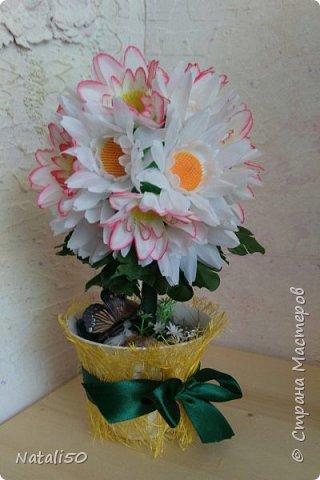 Доброго всем дня!!  Хочется ещё показать мои топиарии и первую пробу в технике  канзаши.. Настроение уже почти летнее.. цветочки, ягодки, фрукты..  фото 2