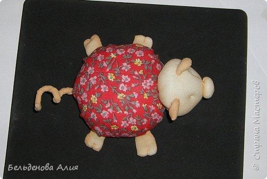 Игольница Хрю сделана по тому же принципу, что и черепашки. фото 17