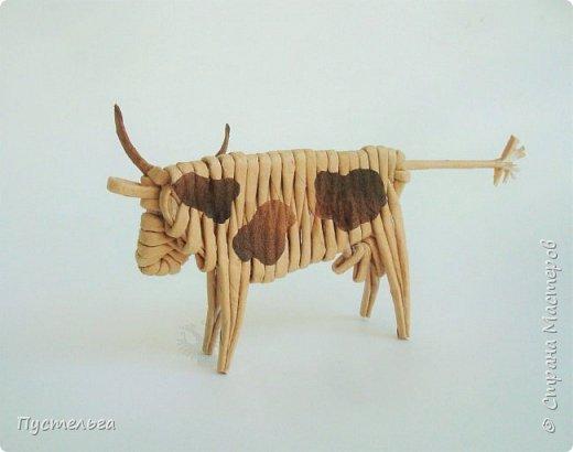 Далеко, далеко на лугу пасутся... Сегодня у нас на лугу пасутся бычки, коровки, зубры и, кажется, буйвол )) фото 9