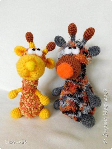 жирафчики