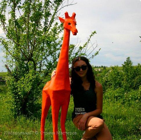 """Добрый день! Приветствую всех!  Давно меня здесь не было) Хочу представить вам мою скульптура - жирафа! Делала я её для сада, в высоту получился 160 см и вес 5 кг) Расскажу как все начиналось, месяца два назад я заинтересовалась паперкрафтом и полностью погрузилась в мир бумажных фигур, я целыми днями сидела и вдохновлялась людьми, которые создают разные шедевры из бумаги. Кому интересно, есть группа в контакте - """"Отборная макулатура"""" , где  есть множество разверток на любой вкус)  Так вот, первой моей работы была кошка, к сожалению фото не прилагаю, потому что не фотографировала её. Затем я сделала трофей панды, фото вы увидите ниже. Ну а потом я долго думала над тем, почему бы мне не сделать большую скульптуру в сад?  На следующий день я пошла купила плотную бумагу и с помощью специальной программы сделала развертку под рост 160см. Затем я распечатала детали и понеслааась работа) Делала я его месяц. Расскажу всё по порядку....   фото 1"""