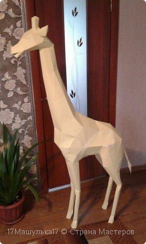 """Добрый день! Приветствую всех!  Давно меня здесь не было) Хочу представить вам мою скульптура - жирафа! Делала я её для сада, в высоту получился 160 см и вес 5 кг) Расскажу как все начиналось, месяца два назад я заинтересовалась паперкрафтом и полностью погрузилась в мир бумажных фигур, я целыми днями сидела и вдохновлялась людьми, которые создают разные шедевры из бумаги. Кому интересно, есть группа в контакте - """"Отборная макулатура"""" , где  есть множество разверток на любой вкус)  Так вот, первой моей работы была кошка, к сожалению фото не прилагаю, потому что не фотографировала её. Затем я сделала трофей панды, фото вы увидите ниже. Ну а потом я долго думала над тем, почему бы мне не сделать большую скульптуру в сад?  На следующий день я пошла купила плотную бумагу и с помощью специальной программы сделала развертку под рост 160см. Затем я распечатала детали и понеслааась работа) Делала я его месяц. Расскажу всё по порядку....   фото 3"""