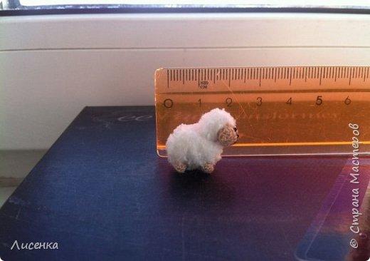 Доброго всем дня! Хочу вам показать свой микромир на ладошке  Вяжу я крючком 0.9 из шерстяных ниток для вышивки.  Ручки и ножки у всех малышей подвижные. фото 7