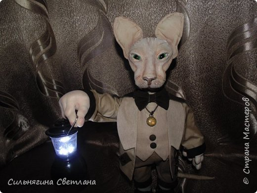 Кот сфинкс  фото 3