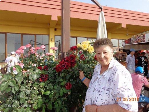 Утро....май...тепло...и море рядом проглядывает за дорогой! Это Алания,в Турции я!!! Неожиданное моё путешествие,не запланировано...Но так надоел наш холод в Башкирии...Выбрала в интернете горящую путёвочку на недельку и махнула к любимому морю... фото 6