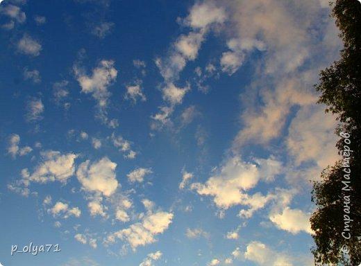 Здравствуйте!!!! Вот и лето к нам пришло,второй день жара не выносимая)) Всё цветёт и радует,вот в очередной раз хочу полюбоваться вместе с вами,мои дорогие!!) фото 47