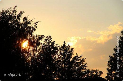 Здравствуйте!!!! Вот и лето к нам пришло,второй день жара не выносимая)) Всё цветёт и радует,вот в очередной раз хочу полюбоваться вместе с вами,мои дорогие!!) фото 49