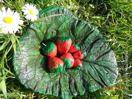 Гипсовые ягодки на листе из бетона