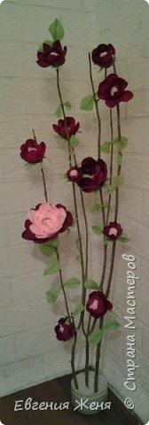 Ростовые цветы фото 2