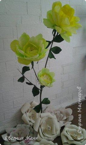 Ростовые цветы фото 1