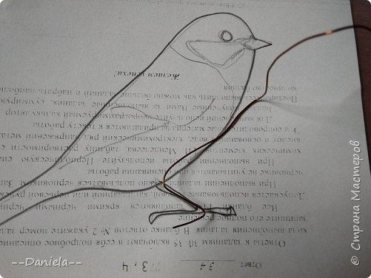 Здравствуй, дорогая страна! Как-то обещала сделать мастер-класс по своим птичкам, давно это было, конечно…  Экзамены, занята была. Но вот подвернулся случай, понадобился подарок, решила заодно заснять процесс.  Так что представляю вам большую синицу…  фото 27