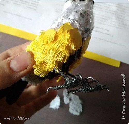 Здравствуй, дорогая страна! Как-то обещала сделать мастер-класс по своим птичкам, давно это было, конечно…  Экзамены, занята была. Но вот подвернулся случай, понадобился подарок, решила заодно заснять процесс.  Так что представляю вам большую синицу…  фото 52