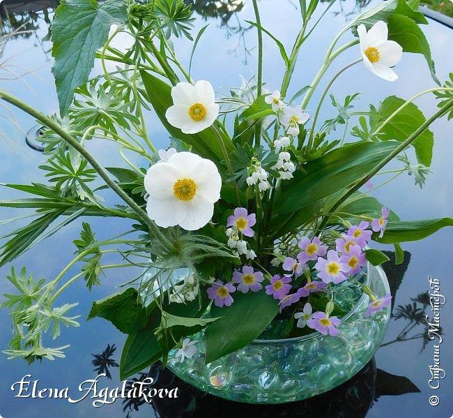 Добрый день! Этим летом я решила осуществить еще одну свою мечту - научится цветочному дизайну. Очень люблю цветы, травки-муравки, деревья и вообще все растения. Уже второй месяц я учусь создавать красоту! Решила поделиться с вами своими композициями и букетами.  фото 2