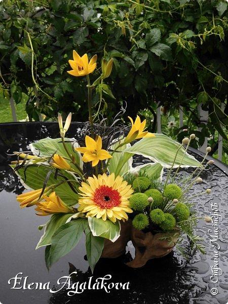 Добрый день! Этим летом я решила осуществить еще одну свою мечту - научится цветочному дизайну. Очень люблю цветы, травки-муравки, деревья и вообще все растения. Уже второй месяц я учусь создавать красоту! Решила поделиться с вами своими композициями и букетами.  фото 1