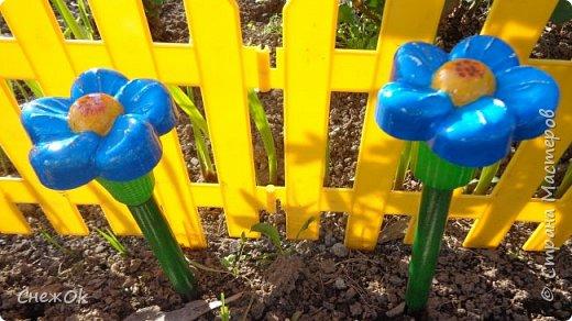 Вторая жизнь садовых фонариков на солнечных батареях фото 2