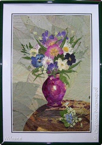 Картина из засушенных цветов фото 1