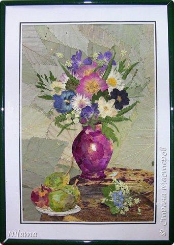 Картина из засушенных цветов фото 2