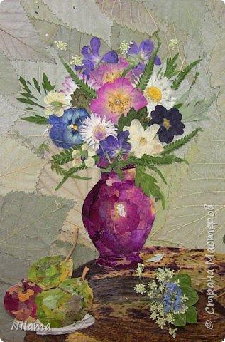 Картина из засушенных цветов фото 3