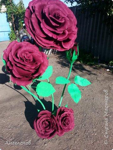Роза из бумаги.Высота 150 см,диаметр цветка 55 см фото 5
